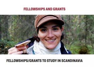 American-Scandinavian Study in Scandinavia Fellowship up to $23,000