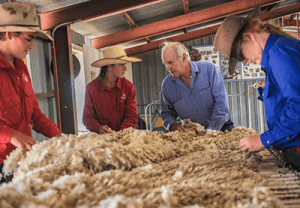 Australia_wool_innovation_scholarship