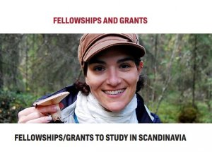 Scandinavia fellowship