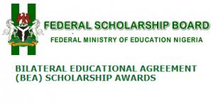 Nigerian Scholarship Award (BEA)